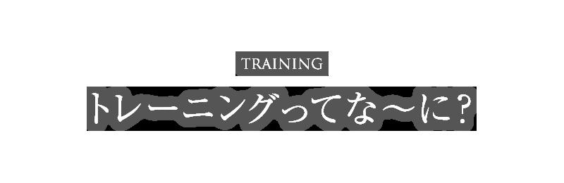 トレーニングってな〜に?