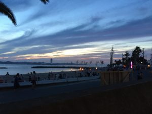 日間賀島の花火大会でした。